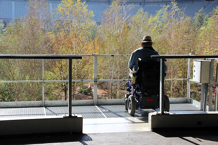 For Forest - Betrachter im Rollstuhl
